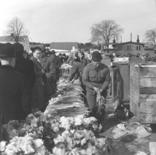 Försäljning av påskliljor på Västra torget i Jönköping