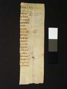 Baksidan av pergamentet.